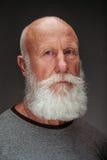 有长的白色胡须的老人 免版税库存图片