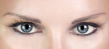 有长的睫毛的美丽的蓝眼睛妇女 免版税库存照片