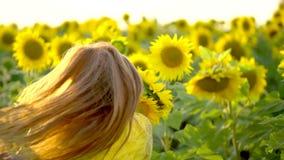 有长的红色头发的秀丽女孩在黄色向日葵领域站立 愉快的户外妇女 青少年 少年 表面 画象 股票视频