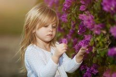 有长的头发嗅到的花的美丽的白肤金发的小女孩 免版税库存图片