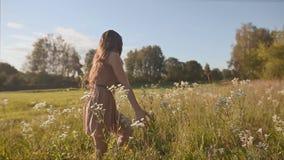 有长的头发的美丽的女孩在一个绿色草甸进来,并且接触花 旋转,享用 影视素材