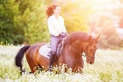 有长的头发骑乘马的女孩在领域 免版税图库摄影