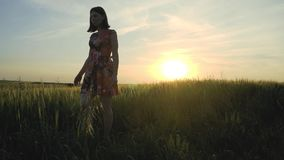 有长的leggs的美丽,可爱的欧洲女孩在与花的短裙在黑麦领域走以为背景 股票视频