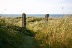 有门的篱芭在象沙丘的领域 免版税库存图片