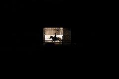 有门的骑术学校在晚上创办打开 免版税库存图片