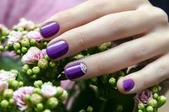 有闪闪发光紫色钉子设计的妇女手 库存照片