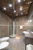 有阵雨客舱、洗手间和净身盆的卫生间 库存照片