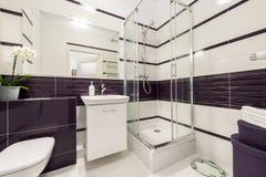有阵雨小卧室的现代卫生间 库存照片