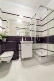 有阵雨小卧室的现代卫生间 免版税库存照片