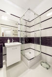 有阵雨小卧室的现代卫生间 库存图片