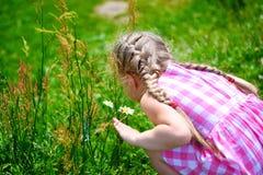 有雏菊的可爱的小女孩在晴朗的夏日 库存图片
