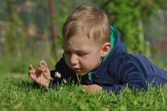 有雏菊的2小男孩 免版税库存照片