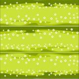 有雏菊的水平的样式草坪 免版税库存图片