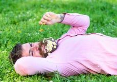 有雏菊花的有胡子的人在胡子在grassplot,草背景放置 过敏和抗组胺概念 308个黄铜弹药筒报道了遥远的空的地面下跪人步枪射击吊索雪目标冬天 免版税图库摄影