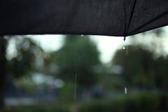 有雨水滴的黑伞  库存照片