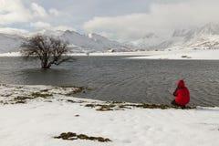 有雪人的湖 免版税库存照片
