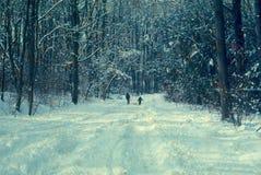 有雪撬的孩子在雪 免版税库存照片