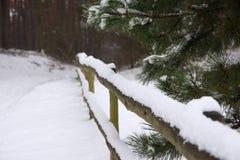 有雪的冬天森林与木栏杆 免版税库存照片