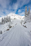 有雪的道路盖子在天堂区域,更加多雨mt风景的看法,华盛顿,美国 图库摄影