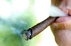 有雪茄和烟的1吸烟者 库存照片