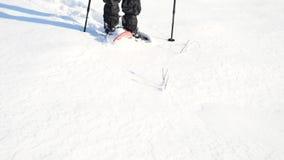 有雪靴步行的人腿在雪 冬天高涨细节在随风飘飞的雪的, snowshoeing与迁徙的杆和鞋子盖子在粉末 股票录像