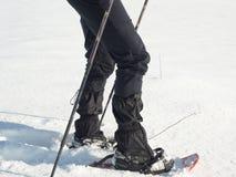 有雪靴步行的人腿在雪 冬天高涨细节在随风飘飞的雪的, snowshoeing 免版税库存图片