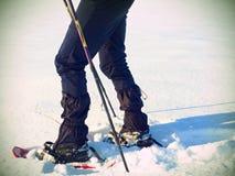 有雪靴步行的人腿在雪 冬天高涨细节在随风飘飞的雪的 库存图片