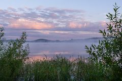 有雾和桃红色云彩的绿色沿海丛林河和框架在黎明 库存照片