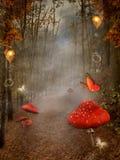 有雾和红色蘑菇的秋季森林 免版税库存照片