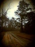 有雾在阿肯色 免版税库存照片