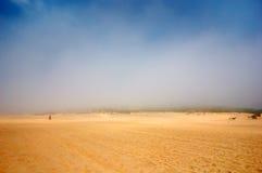 有雾日的沙漠 库存照片