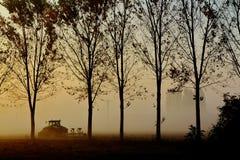 有雾早晨犁 免版税库存照片