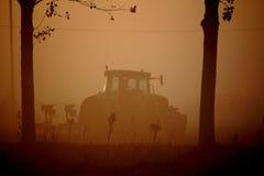 有雾早晨犁 免版税图库摄影