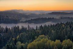 有雾的乡下早晨 库存图片