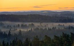 有雾的乡下风景 库存图片