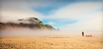 有雾的俄勒冈海岸 图库摄影