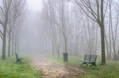 有雾的公园在冬天 免版税库存照片