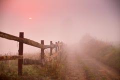 有雾的农村场面 篱芭和土路在有薄雾的早晨 免版税库存图片