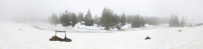 有雾的冬天全景 免版税库存照片
