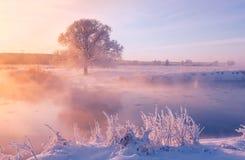 有雾的冬天日出 库存照片