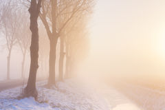有雾的冬天的日出在荷兰 免版税库存图片