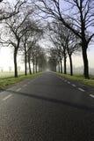有雾的冬天路 免版税库存照片