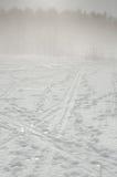 有雾的冬天风景 免版税图库摄影