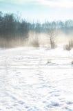 有雾的冬天风景 库存照片