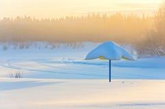 有雾的冷淡的早晨 免版税库存照片
