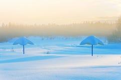 有雾的冷淡的早晨 免版税库存图片