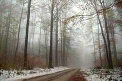 有雾的场面雪 免版税库存图片