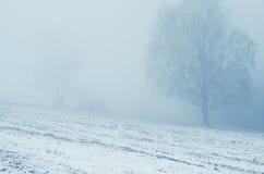 有雾的场面 免版税库存照片