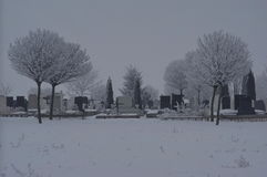 有雾的墓地 库存照片