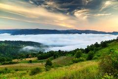 有雾的夏天早晨 免版税库存照片